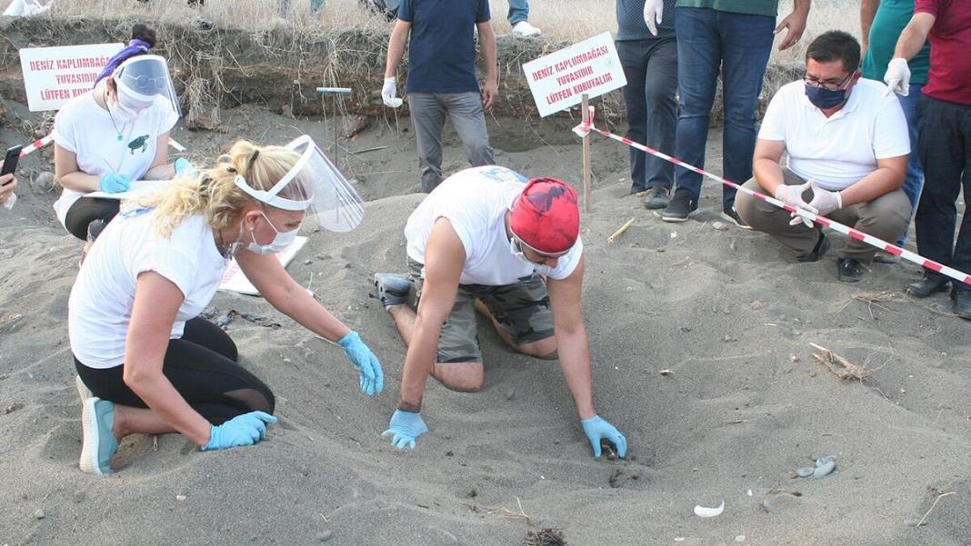 Alata sahili sit alanı ilan edildi