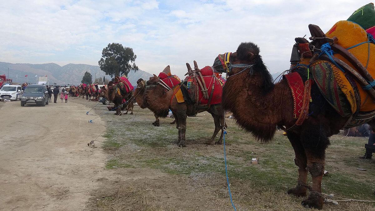 Aydın'ın i̇ncirliova ilçesinde deve sucuğu üreterek 81 ile gönderen musa budak (20) kış aylarında talebi karşılamakta zorlandıklarını söyledi.