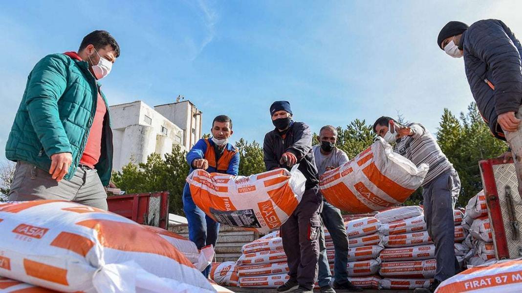 Başkentli çiftçilere kırmızı mercimek tohumu desteği