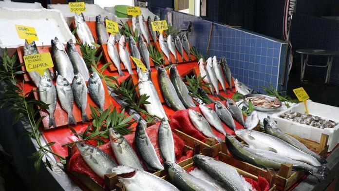 Havalar soğudu, balık avı arttı