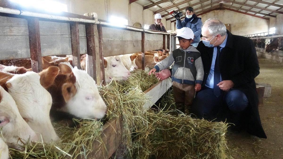 Soğuk zincir süt projesi üreticinin yüzünü güldürdü
