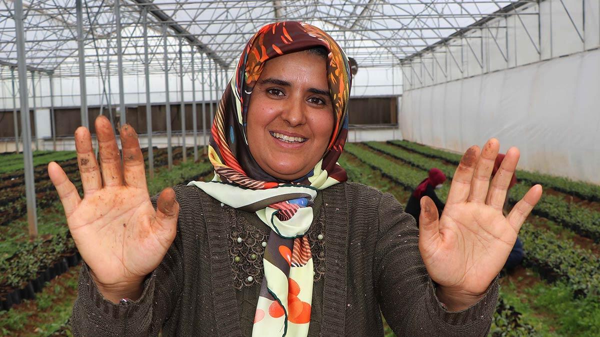 7 kadın kooperatif kurarak ihracata başladı