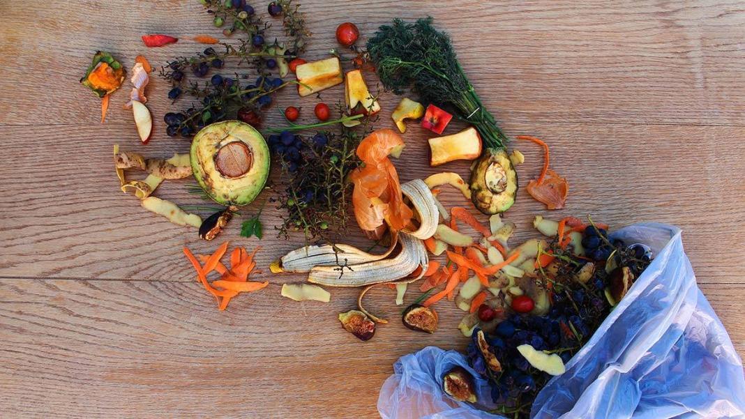 Her yıl 931 milyon ton gıda çöpe gidiyor