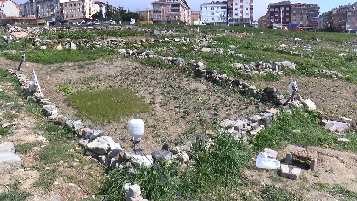 Sultangazi'de sanayi sitesi ve binalar arasında kalan yeşil alan koronavirüs döneminde mahalle sakinlerince hobi bahçesine dönüştürüldü.