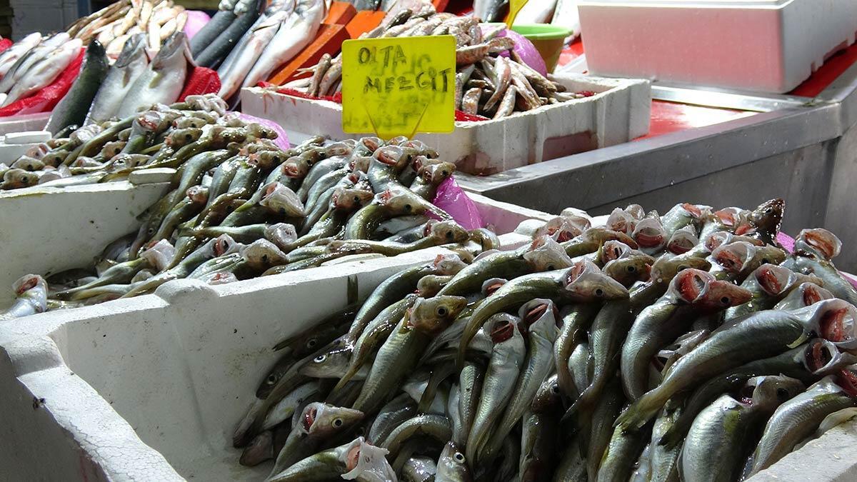 Barbun ve somon balıkları yoğun talep görüyor