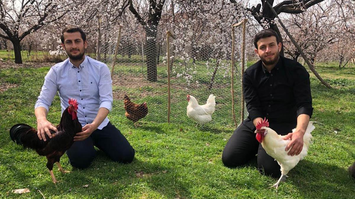2 kardeş civciv yetiştirip yumurta üretimine başladı