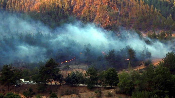 Chp'den orman yangınlarının araştırılması için önerge