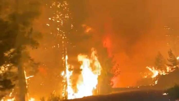 Orman yangınları için bakan çavuşoğlu'na taziye