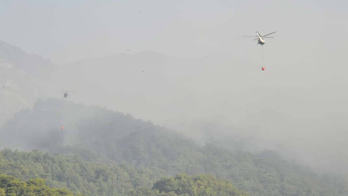 Balikesir ormanlarinda dron ucurmak yasaklandi 2 - yerel haberler - haberton