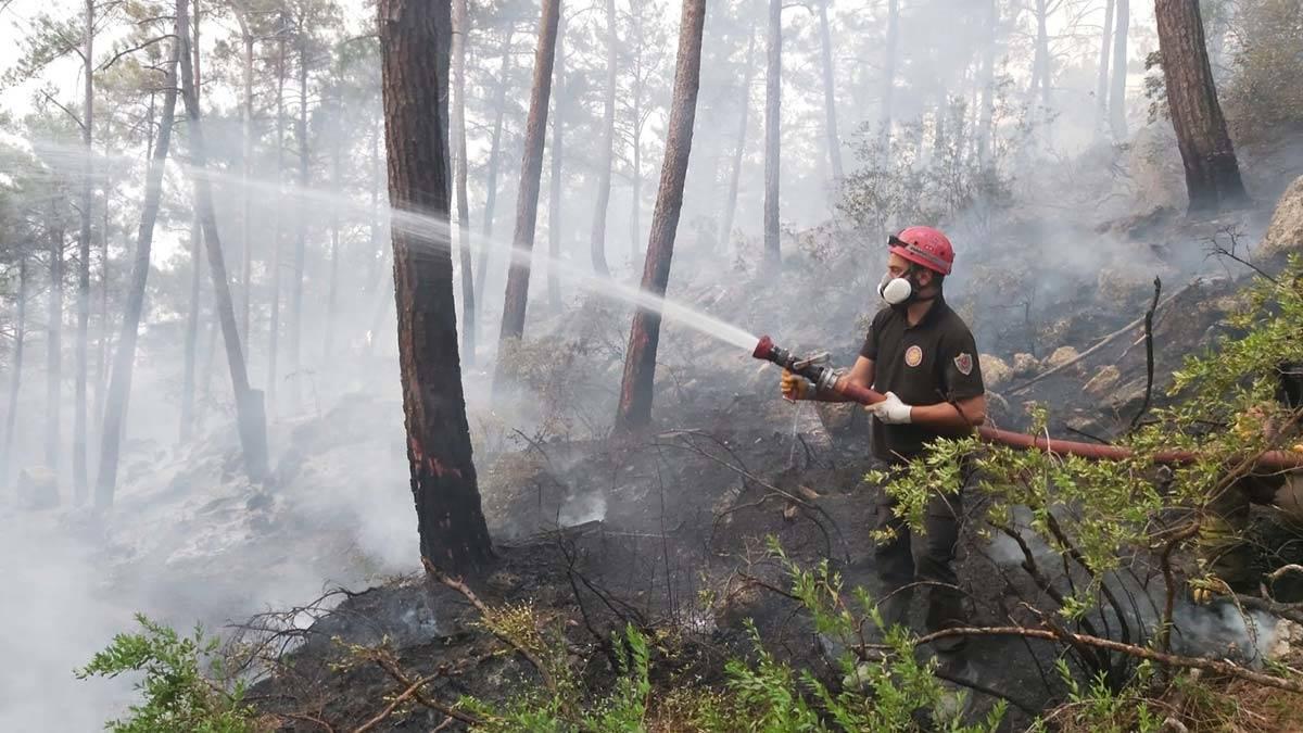 Belediye ekiplerinin orman yanginlari ile mucadelesi 2 - öne çıkan - haberton