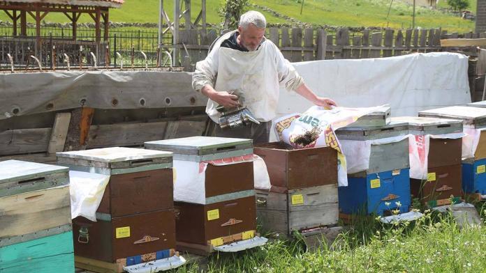 Satış fiyatı 1200 tl olan anzer balına 1 ton sipariş