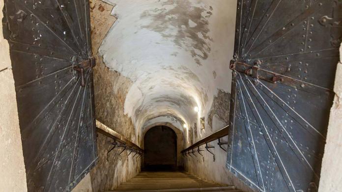 Avusturya'da ölen annesini bodrumda sakladı