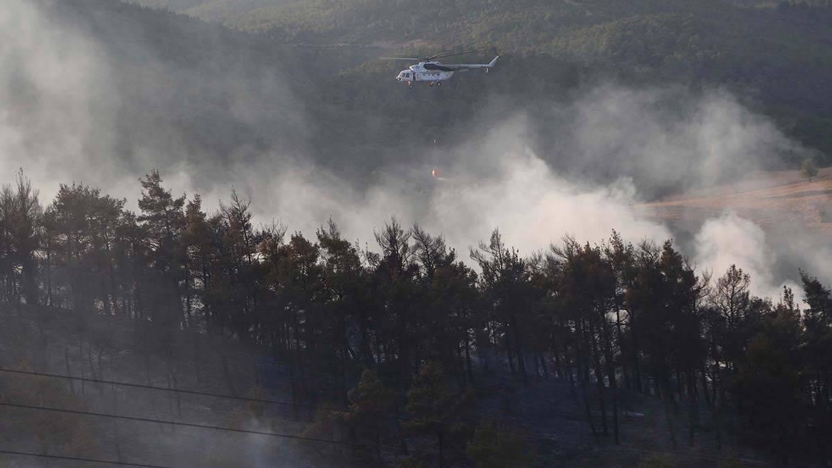 Canakkale orman yangini ile mucadele ediyor 4 - yerel haberler - haberton