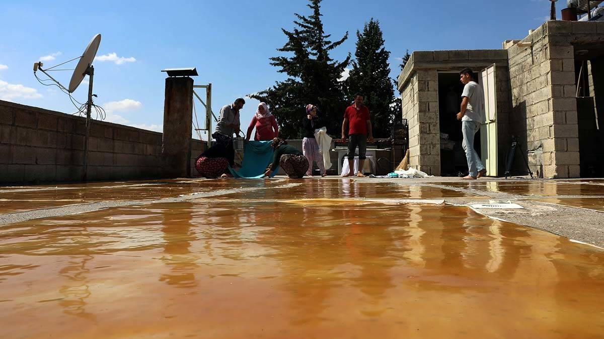 Gaziantepte uzumlerin pekmez ve pestil yolculugu 2 - yerel haberler - haberton