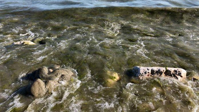 Eğirdir gölü'ne döşenmiş lağım boruları patladı