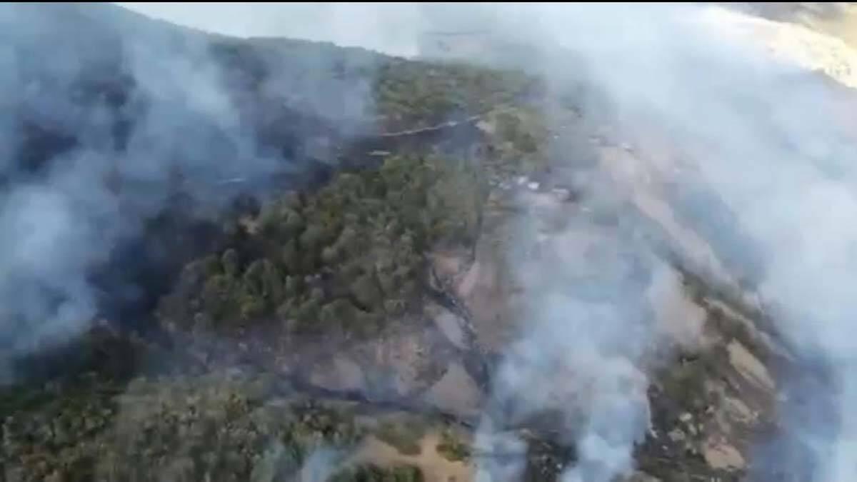 Tunceli'de örtü yangını çıktı